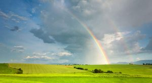 Does The Rainbow Appear In The Fixed Income Markets